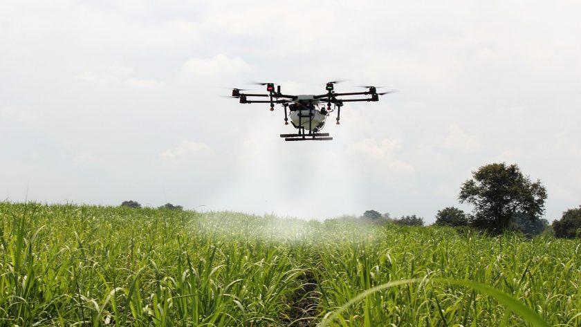opinie o dronie